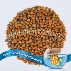 Tetra Cichlid Algae Mini.